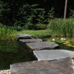 Zwemvijver met flagstone pad