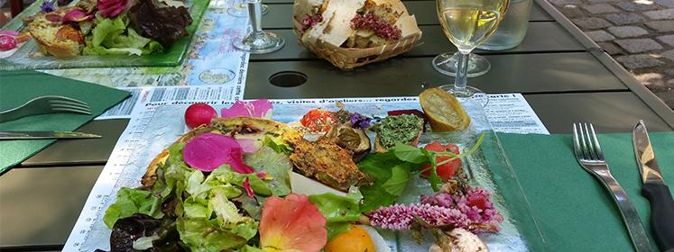 De eetbare tuin tuinontwerpbureau ineke brunekreeft for Tuinontwerp eetbare tuin